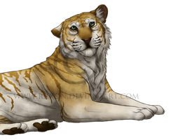 Bengal Tiger by Riixon