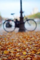 fall perspective by alahay