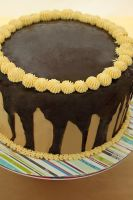 Classic Triple Chocolate Cake by munchinees