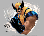 Wolverine (Mixed Styles) by jinsonlygurl