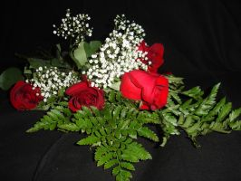 Valentine Roses Stock 1 by ChaosStock