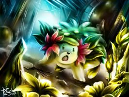 THE LIGHT OF SHAYMIN by TrachaaArMy