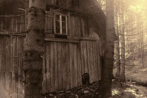 The Old Mill 1 by nezumi-photography