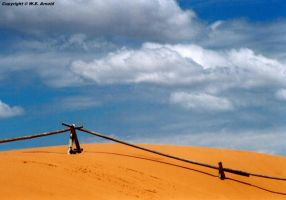Pink Coral Sand Dunes by WEArnold