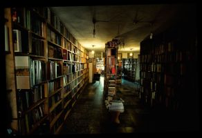 Where is the  cat? by kavsikuzah