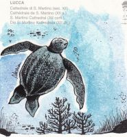 Drawing on postcard - Sea turtle by Seadre