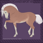 Nordanner Import 495 by Dollyrawr