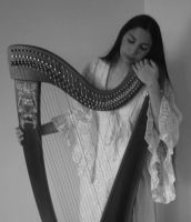 Black and white - celtic Harp by Harpist-Stock