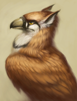 Rufous Gryphon by AngasiiWorks