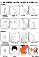 Fist Pump Instruction Manual by ecelsiore