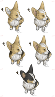 FP IB Dump: Corgi Invasion. by Wrisk