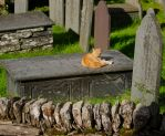 Guarding the grave by forgottenson1
