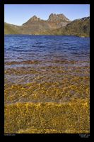 Cradle Mountain by neilcreek
