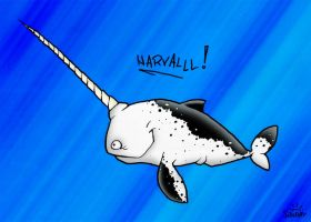 Narwhal by Nedelja