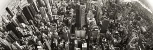 New York Panorama by Peewee-Productions