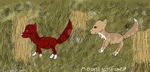 Amberwing and Sweetfern walking by MoonlightsFoxes