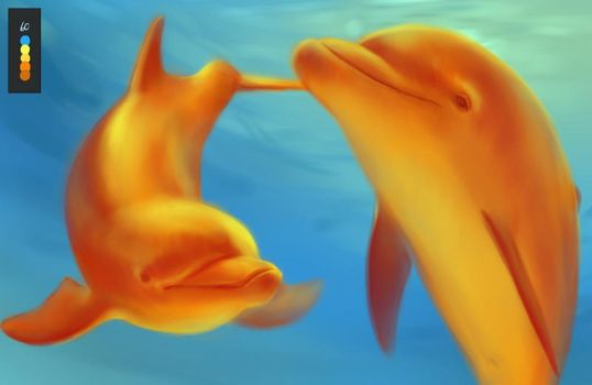 Dolphin4 by JSCallan