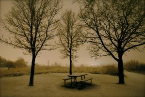 Snowy picnic table by MNgreen