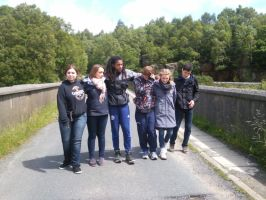We just do not pose on a brigde... by furiousflamewolf