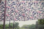 Don't you just love the smell of the rain? by christykarina