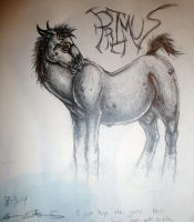 Primus Horse Concept by horseydino