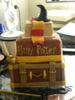 My Harry Potter Cake by MClara22