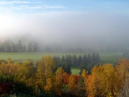 Foggy Autumn Morning No.102 by schon