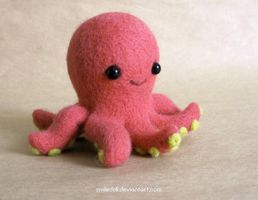 Octopus by Katy-Doll