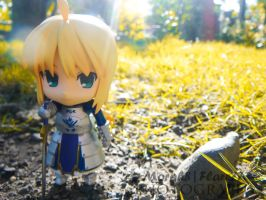 The King on the Golden Fields. by morph8