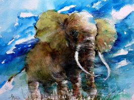 Asian Elephant by young920