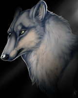 Wolf paint by moonsteps