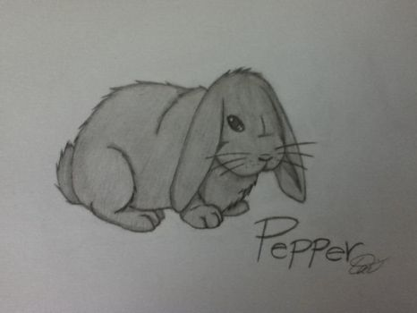 In memory of Pepper the bunny. by daisuke-kun89