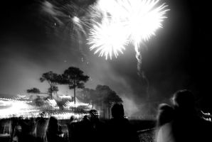 Black and White Fireworks by WadeCreativeSuite