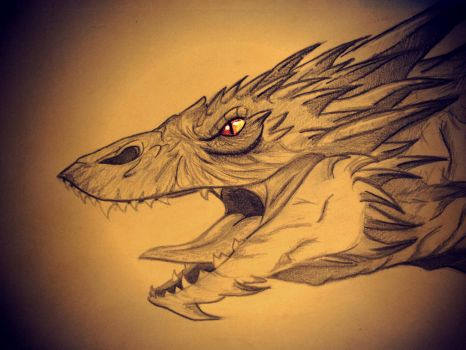 Smaug by andropov97