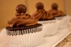 Chocolate Malt Cupcakes by Alice0fSpades