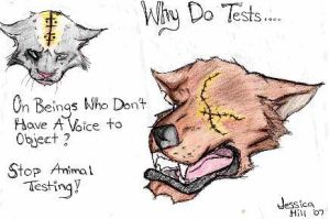 Animal Testing by x-Venell-x