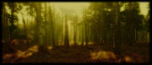 Ghostwood by Forestina-Fotos