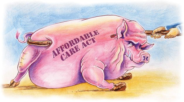 Affordable Care Pig by Rogue5