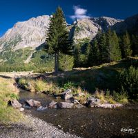 Le ruisseau by rdalpes