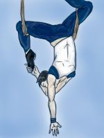 Acrobat by FromTheBatCave