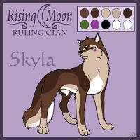 Rising Moon - Skyla Ref by Dorchette
