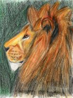 Lion by Lapapolnoch