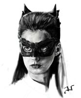 Catwoman WIP by Jaimus