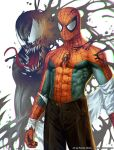Spiderman by randis