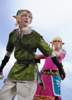 Pushes Link off cliff, doesn't say sorry by celticruins