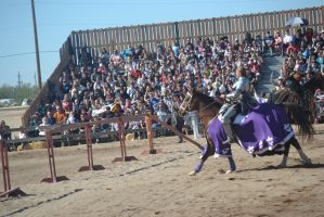 Jousting - 5 by Silver-Stock-Images