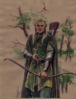 Legolas the Hunter by DavidRabbitte