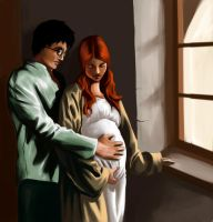 Lily and James Potter by uriko33