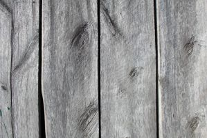 Wood Texture Stock 4 by GregKmk