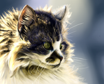Cat Realism by fifisart